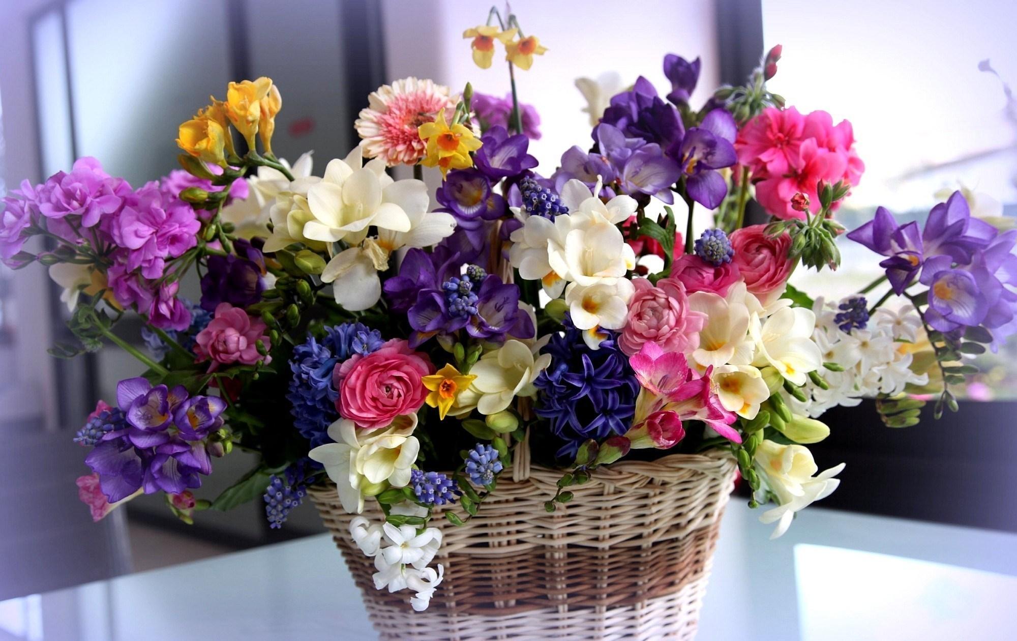 качестве самые красивые картинки про цветы зависит сложности