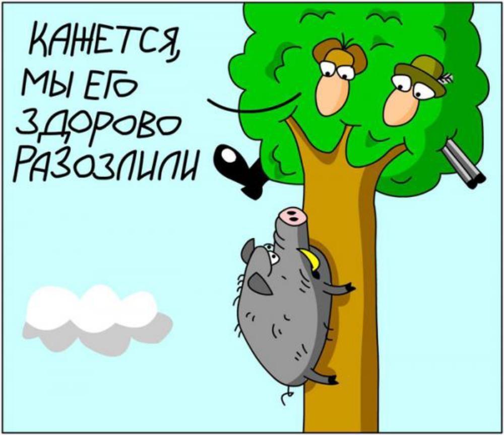 Винкс, самые смешные картинки и карикатуры с надписями