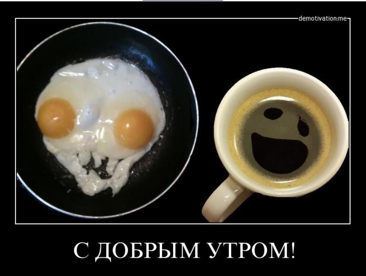 Смешные картинки на доброе утро