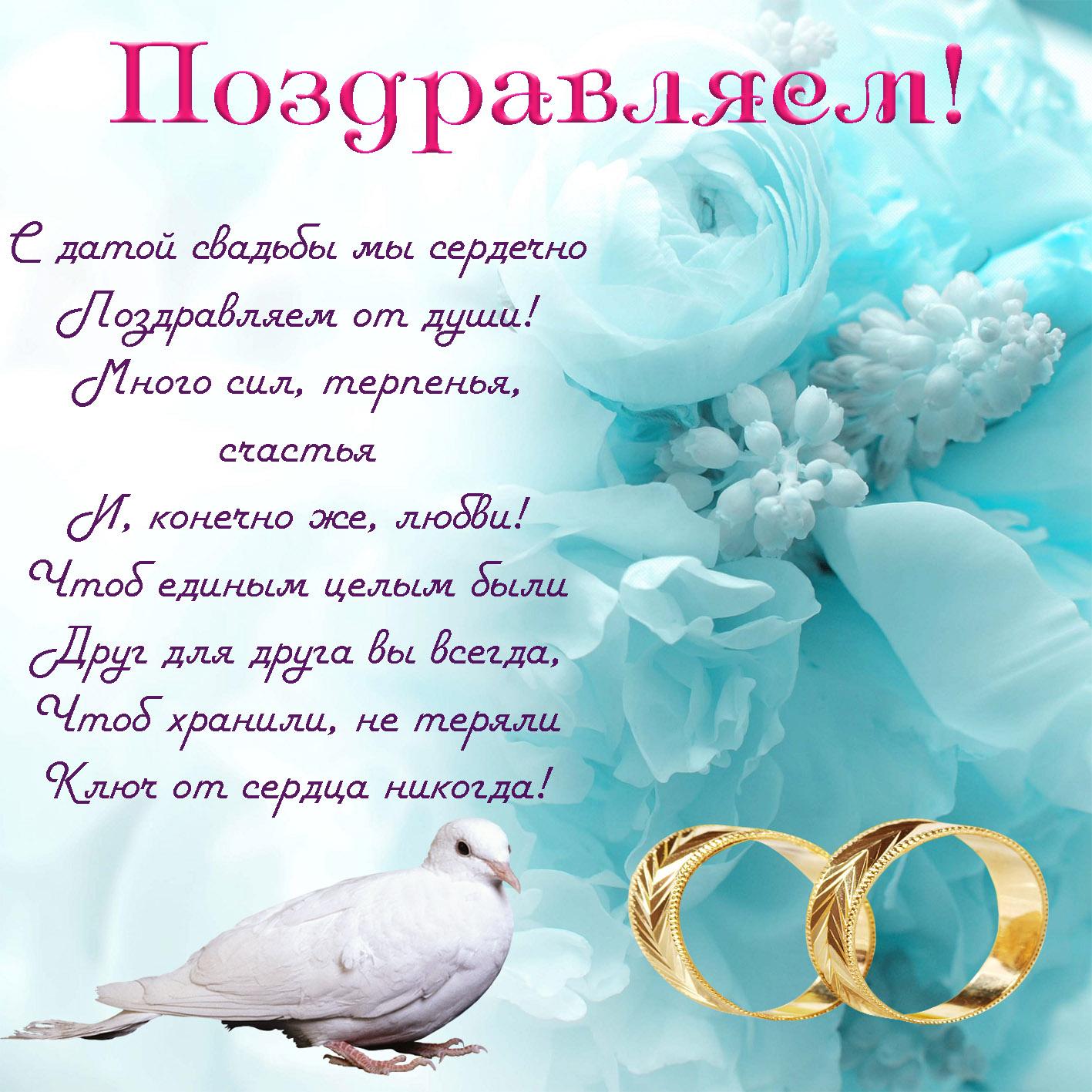 предпоследнее с годовщиной бракосочетания поздравления картинки внимательно следит красавицей-наследницей