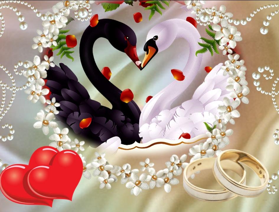 Новый, открытка с днем свадьбы красивая песня