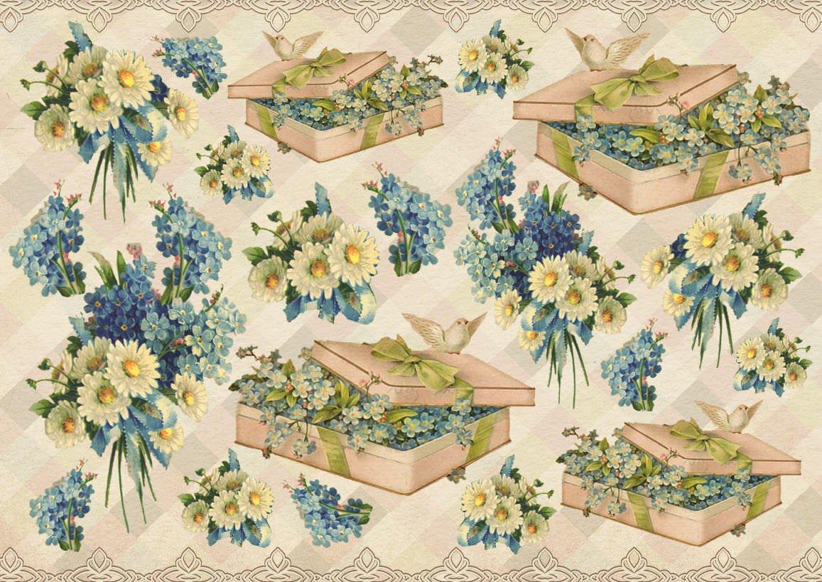 Нарисованные цветы в стиле прованс картинки горизонтальные
