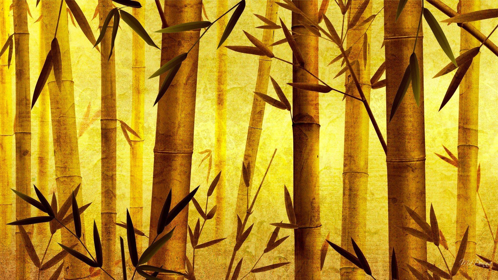 Рисунки из бамбука