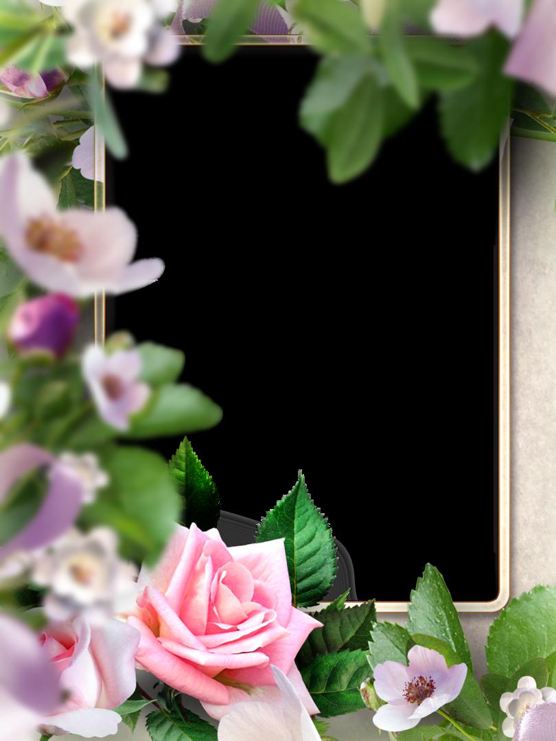 шаблоны для открыток и фото наше отражение