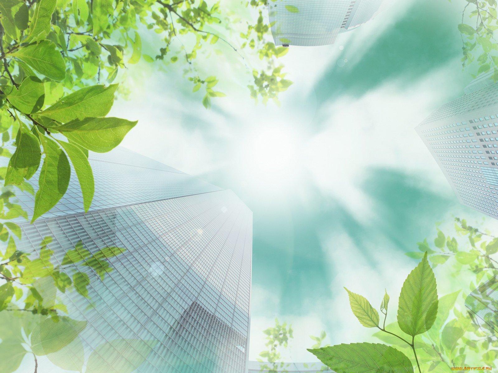 картинки для оформления презентаций по экологии фото