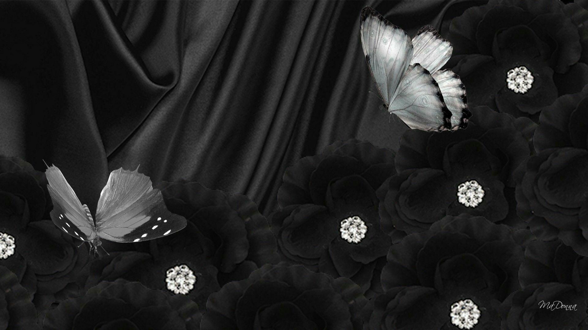 Фотки с черным фоном на телефон