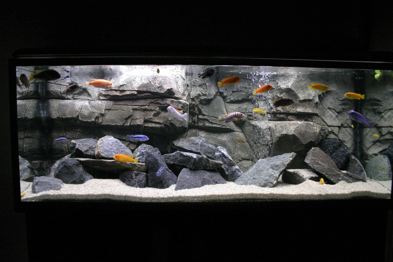 фон из ткани для аквариума большая