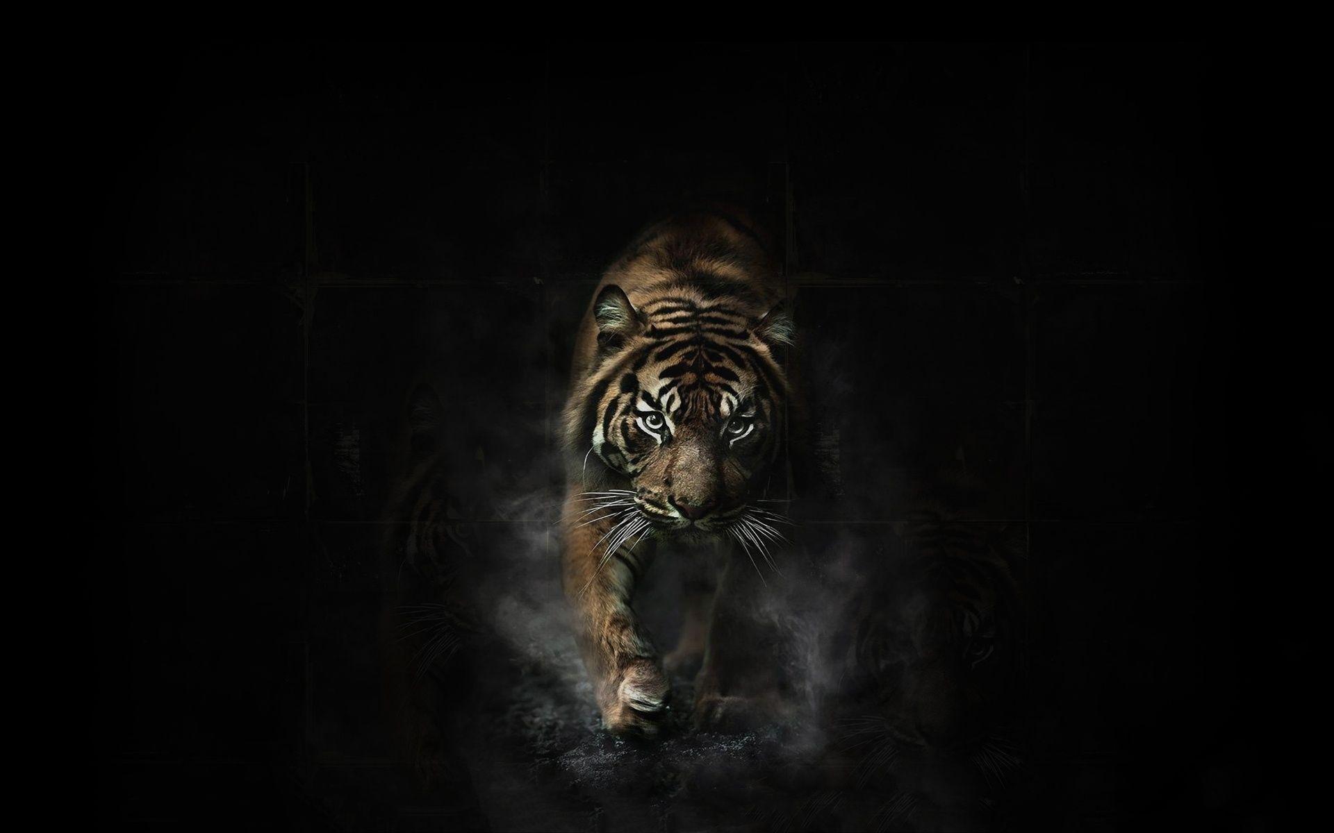 поздравления днем темные картинки с тигром тесто
