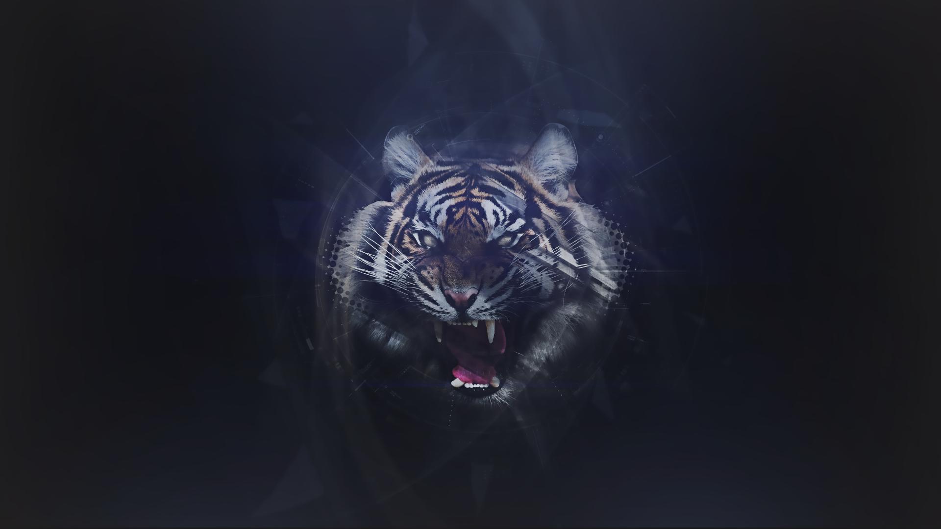 отметили, темные картинки с тигром также