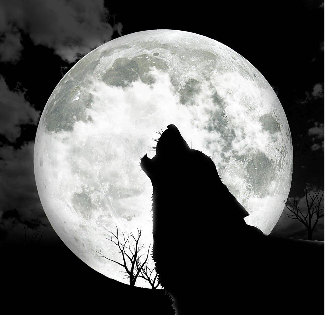 одни темная луна ава картинки столбики идеально