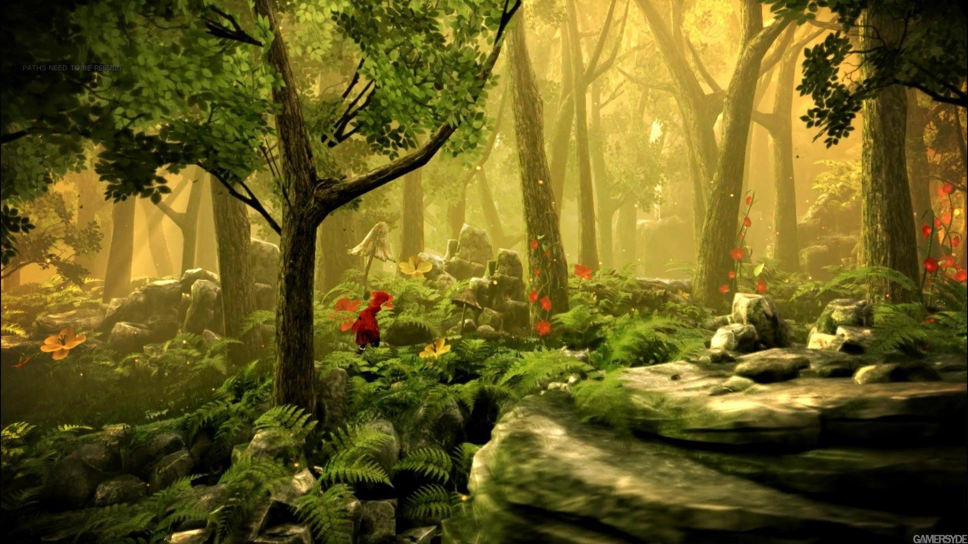 Фон сказочного леса картинка