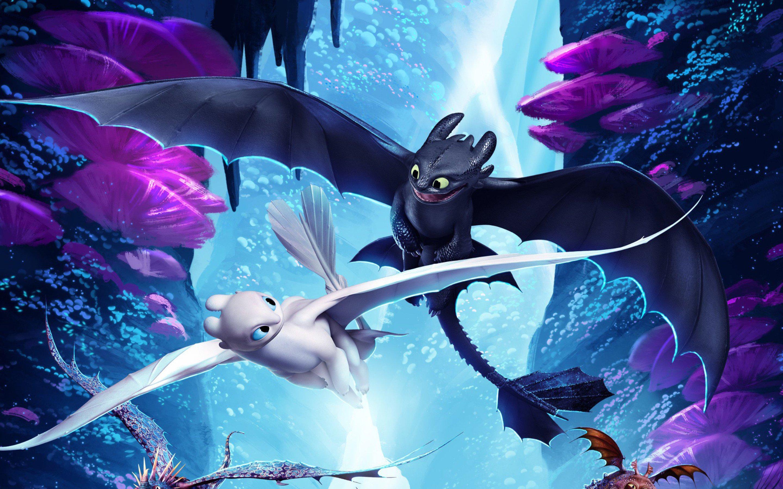 Картинки из мультфильма как приручить дракона в хорошем качестве