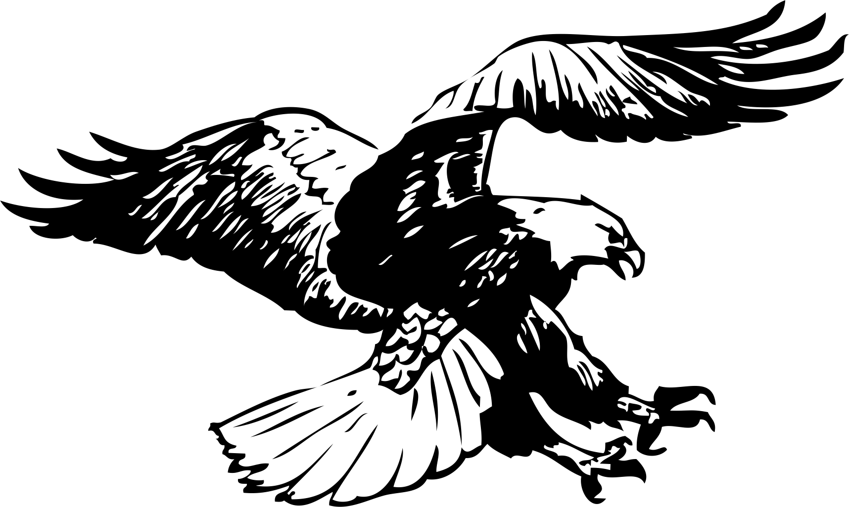 картинки орлов и ястребов черно белые создавая