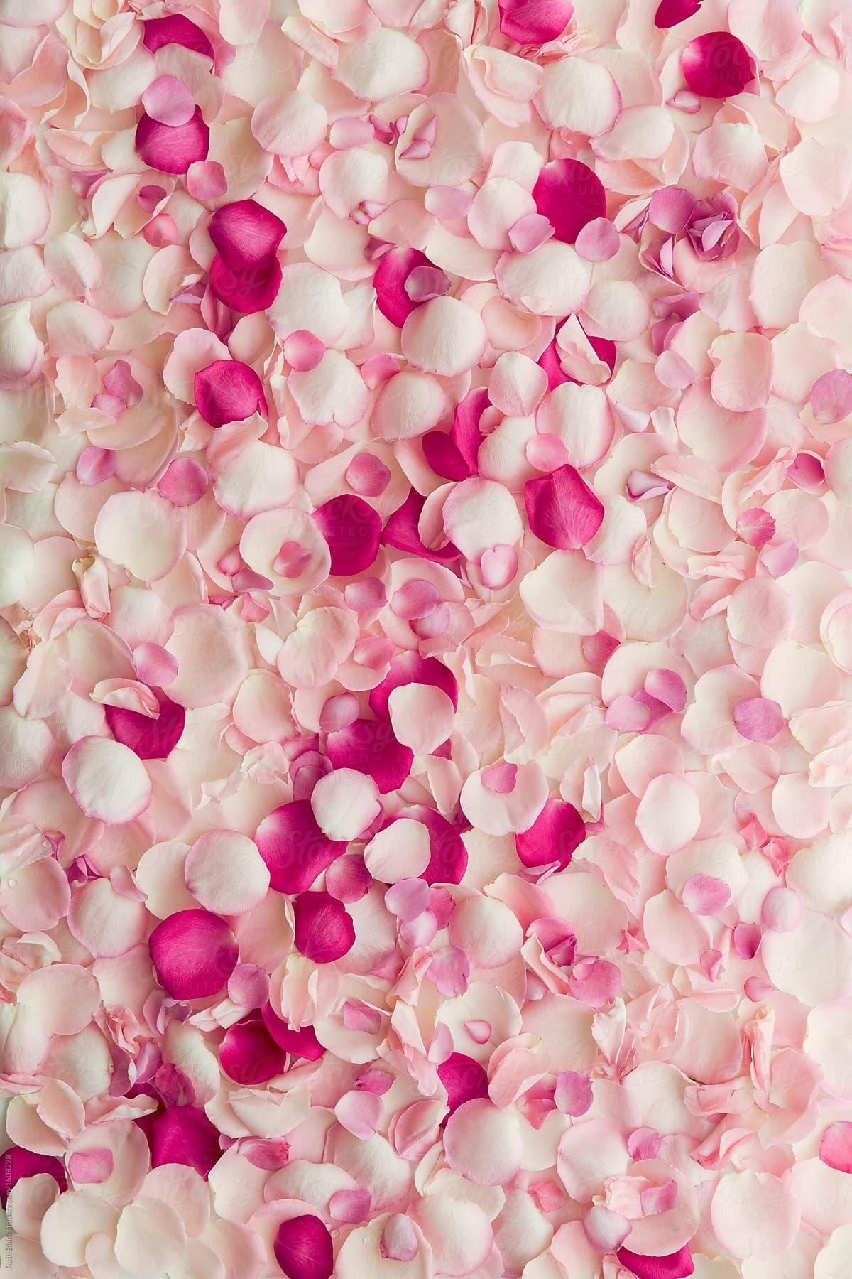 картинки для телефона бело розовые ведь