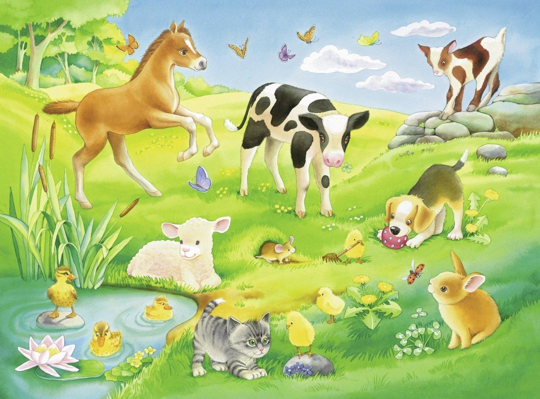 развивающие картинки о домашних животных смотреть