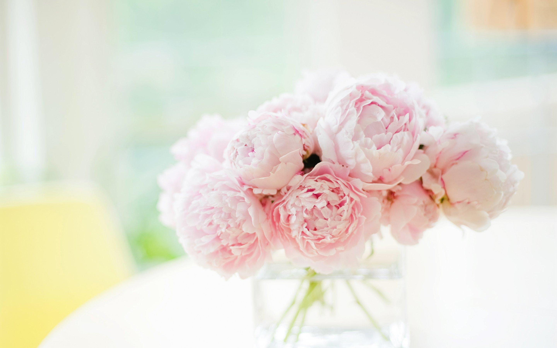 вид нежные цветы фото большие продиктовать номер телефона
