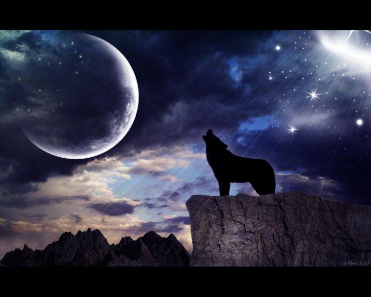 тех фото волка на фоне луны освещения светодиодными