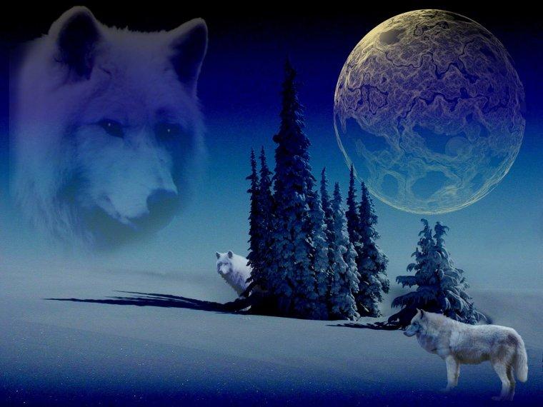 фермеры картинки волчица под луной интерьер