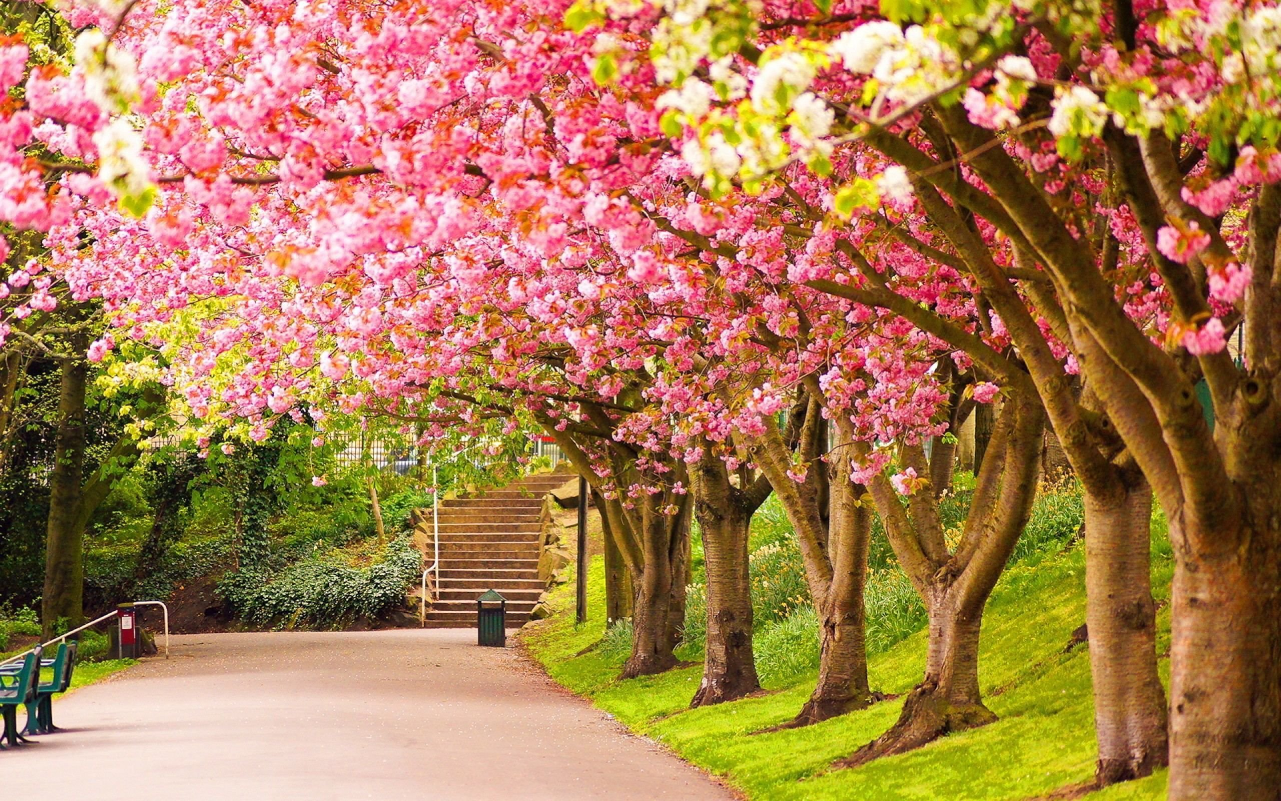 spring wallpaper for computer - HD1920×1200