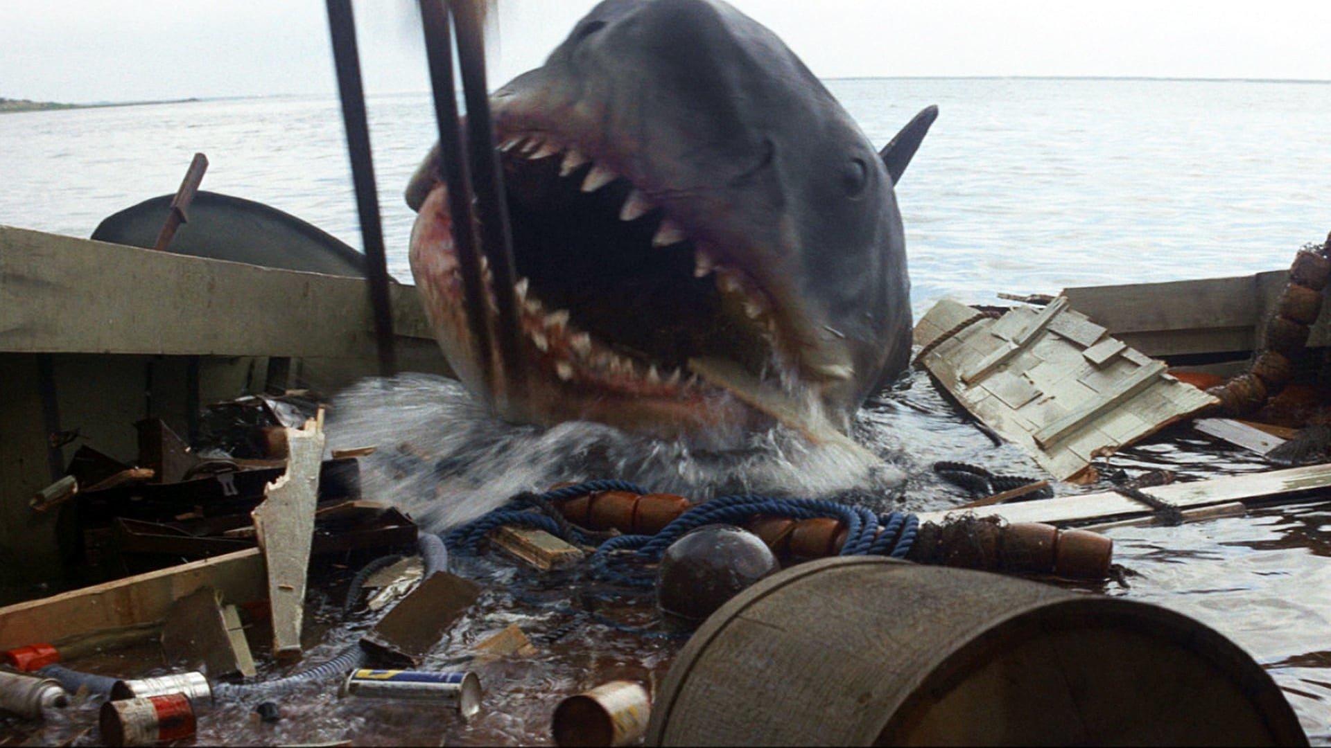 менее, кино про акул картинки проведение праздников, концертных